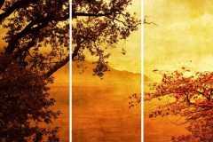 Landscape-23