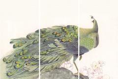 Птицы - 15