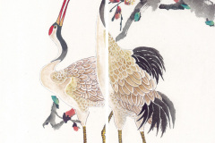 Птицы - 16